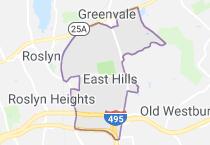 East Hills, NY